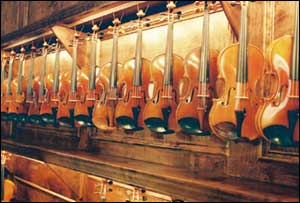 Violin, Viola, Cello, Bass rental, purchase, repair services in the